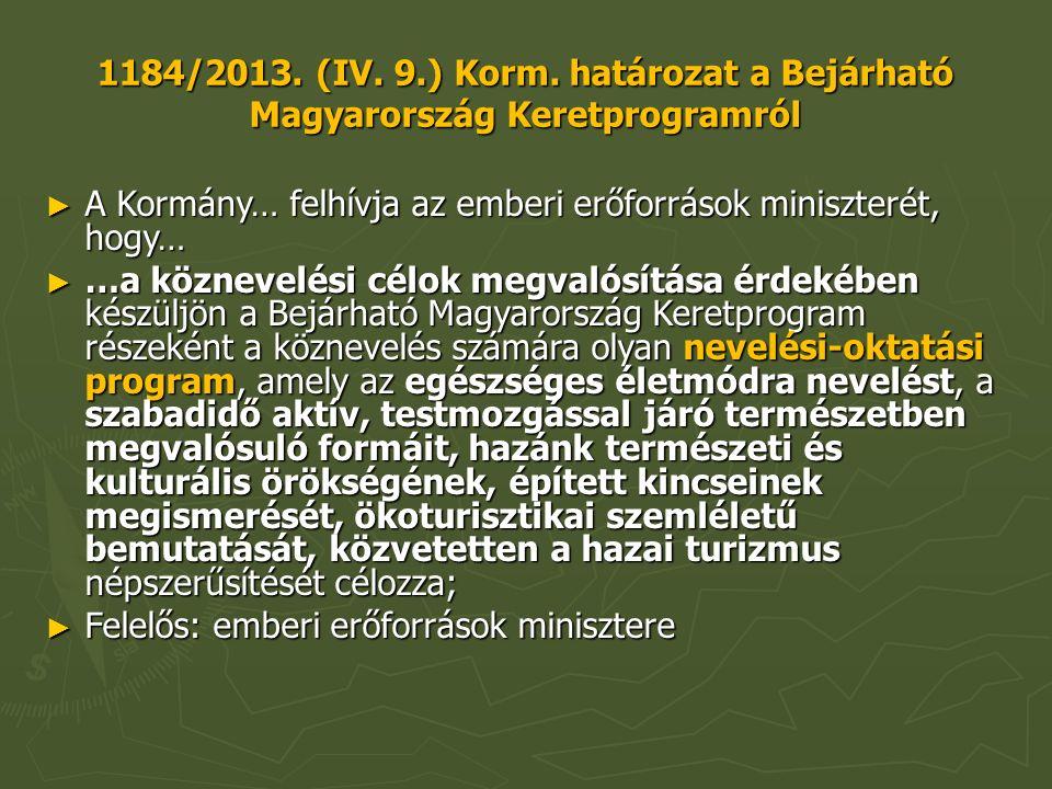 1184/2013. (IV. 9.) Korm.