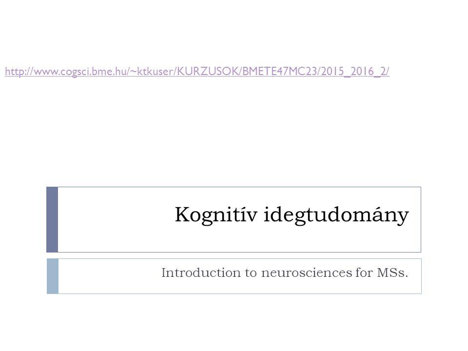 Bazális ganglionok afferensei  Fő befogadó: striatum  Caudatum:  Fej:frontalis lebeny, premotor cortex, szupplementer motor cortex  Test :pariet.