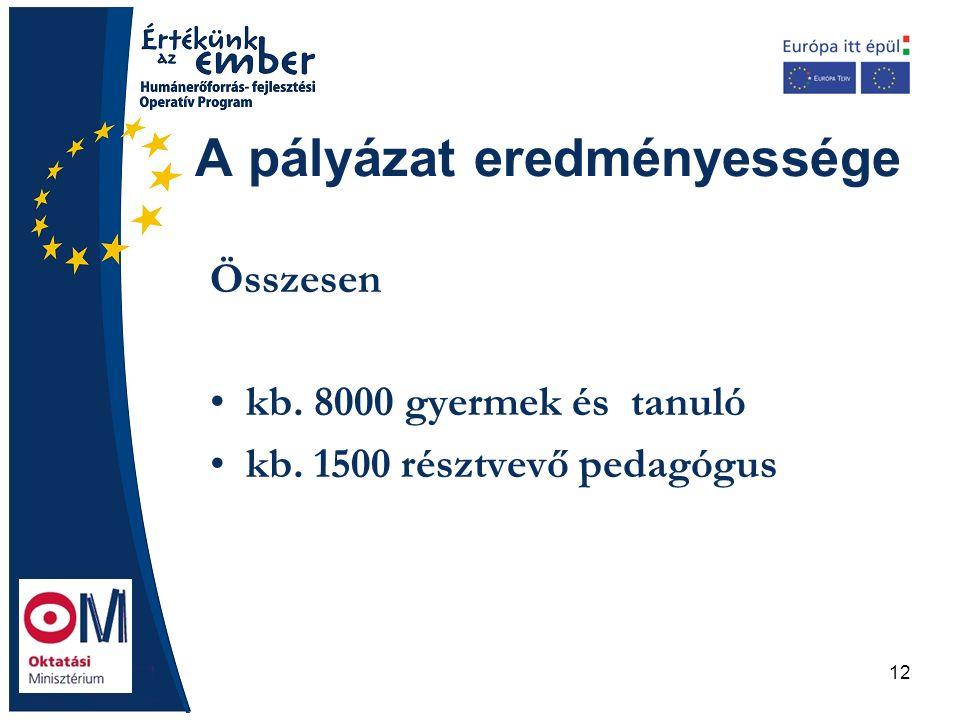 12 A pályázat eredményessége Összesen kb. 8000 gyermek és tanuló kb. 1500 résztvevő pedagógus