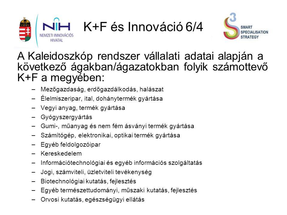 K+F és Innováció 6/4 A Kaleidoszkóp rendszer vállalati adatai alapján a következő ágakban/ágazatokban folyik számottevő K+F a megyében: –Mezőgazdaság, erdőgazdálkodás, halászat –Élelmiszeripar, ital, dohánytermék gyártása –Vegyi anyag, termék gyártása –Gyógyszergyártás –Gumi-, műanyag és nem fém ásványi termék gyártása –Számítógép, elektronikai, optikai termék gyártása –Egyéb feldolgozóipar –Kereskedelem –Információtechnológiai és egyéb információs szolgáltatás –Jogi, számviteli, üzletviteli tevékenység –Biotechnológiai kutatás, fejlesztés –Egyéb természettudományi, műszaki kutatás, fejlesztés –Orvosi kutatás, egészségügyi ellátás