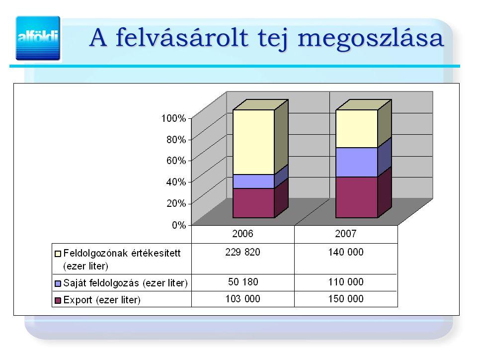 A Csoport piaci pozícióinak alakulása 2004-2007. Felvásárlás