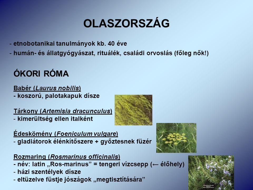 - etnobotanikai tanulmányok kb.