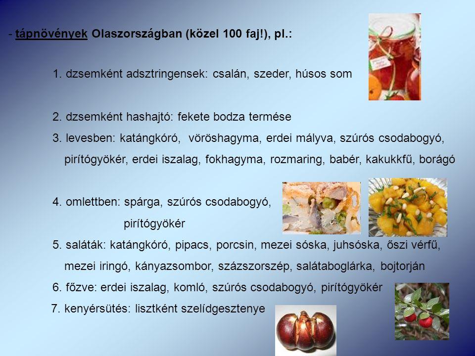 - tápnövények Olaszországban (közel 100 faj!), pl.: 1.