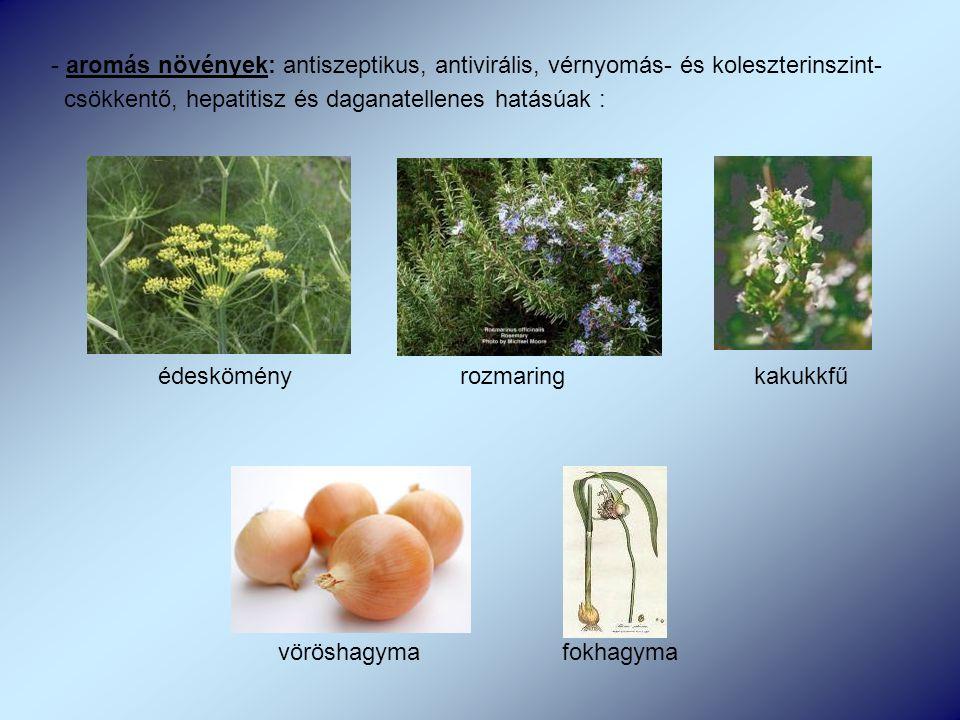 - aromás növények: antiszeptikus, antivirális, vérnyomás- és koleszterinszint- csökkentő, hepatitisz és daganatellenes hatásúak : édeskömény rozmaring kakukkfű vöröshagyma fokhagyma