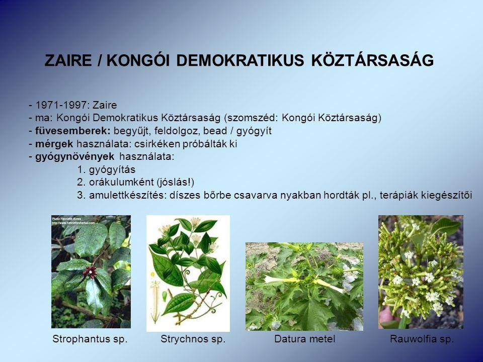 ZAIRE / KONGÓI DEMOKRATIKUS KÖZTÁRSASÁG - 1971-1997: Zaire - ma: Kongói Demokratikus Köztársaság (szomszéd: Kongói Köztársaság) - füvesemberek: begyűjt, feldolgoz, bead / gyógyít - mérgek használata: csirkéken próbálták ki - gyógynövények használata: 1.