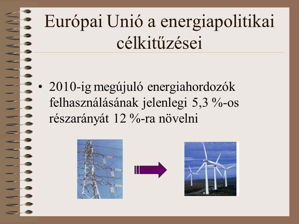 Európai Unió a energiapolitikai célkitűzései 2010-ig megújuló energiahordozók felhasználásának jelenlegi 5,3 %-os részarányát 12 %-ra növelni