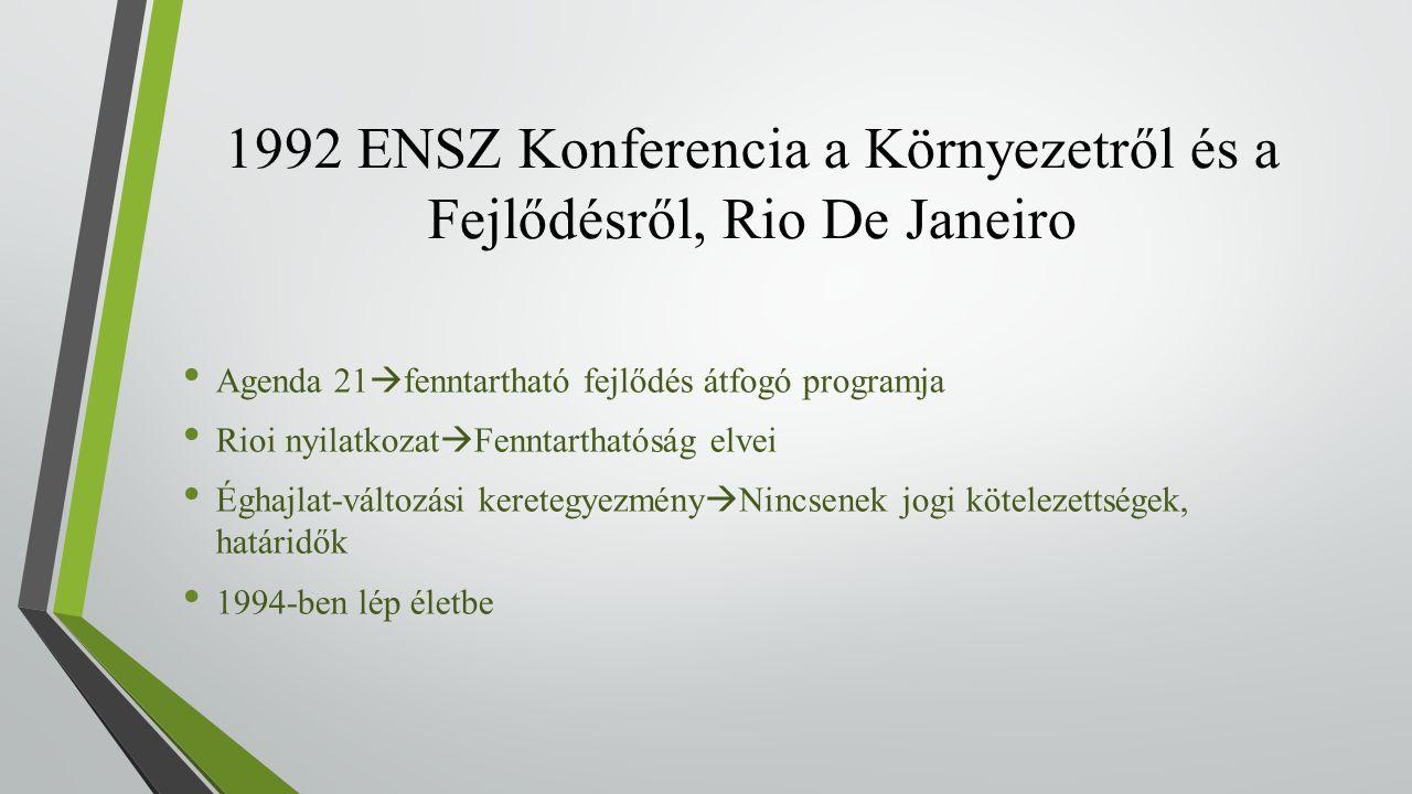 1992 ENSZ Konferencia a Környezetről és a Fejlődésről, Rio De Janeiro Agenda 21  fenntartható fejlődés átfogó programja Rioi nyilatkozat  Fenntarthatóság elvei Éghajlat-változási keretegyezmény  Nincsenek jogi kötelezettségek, határidők 1994-ben lép életbe