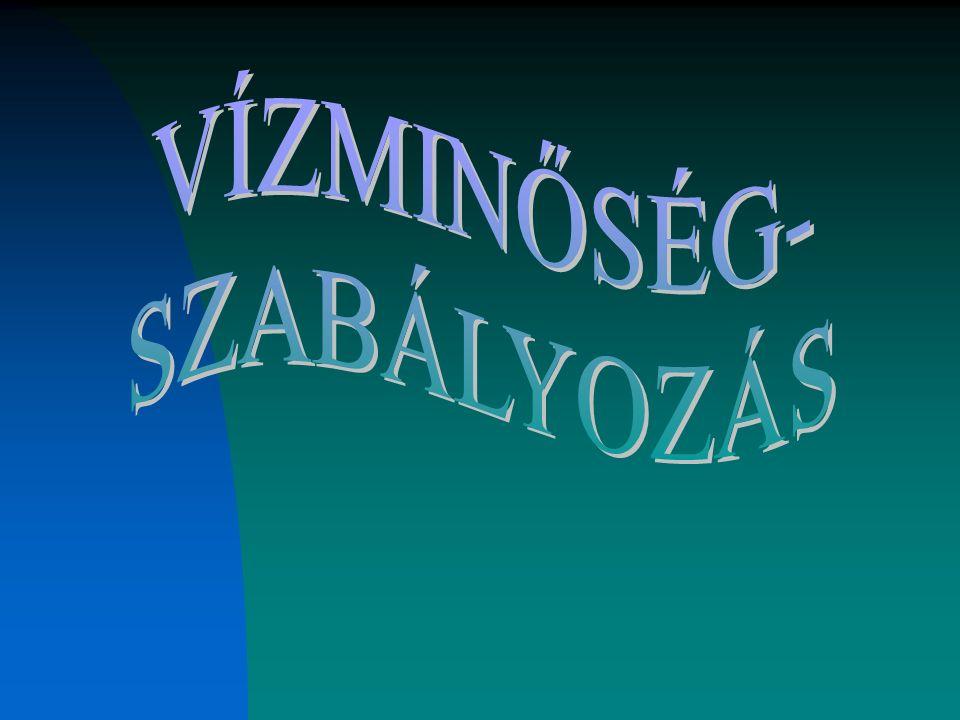 KOMMUNÁLIS SZENNYVÍZTISZTÍTÓ TELEPEK (2003)
