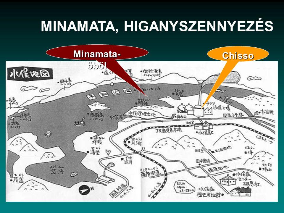 Chisso Minamata- öböl MINAMATA, HIGANYSZENNYEZÉS