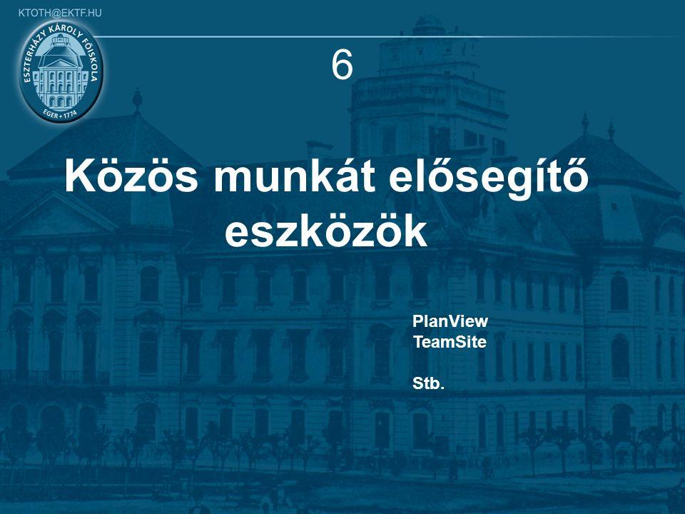 6 Közös munkát elősegítő eszközök PlanView TeamSite Stb.