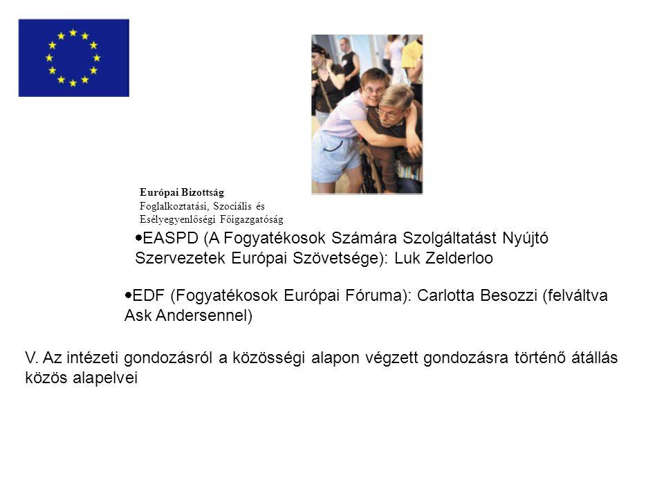 Európai Bizottság Foglalkoztatási, Szociális és Esélyegyenlőségi Főigazgatóság  EASPD (A Fogyatékosok Számára Szolgáltatást Nyújtó Szervezetek Európai Szövetsége): Luk Zelderloo  EDF (Fogyatékosok Európai Fóruma): Carlotta Besozzi (felváltva Ask Andersennel) V.