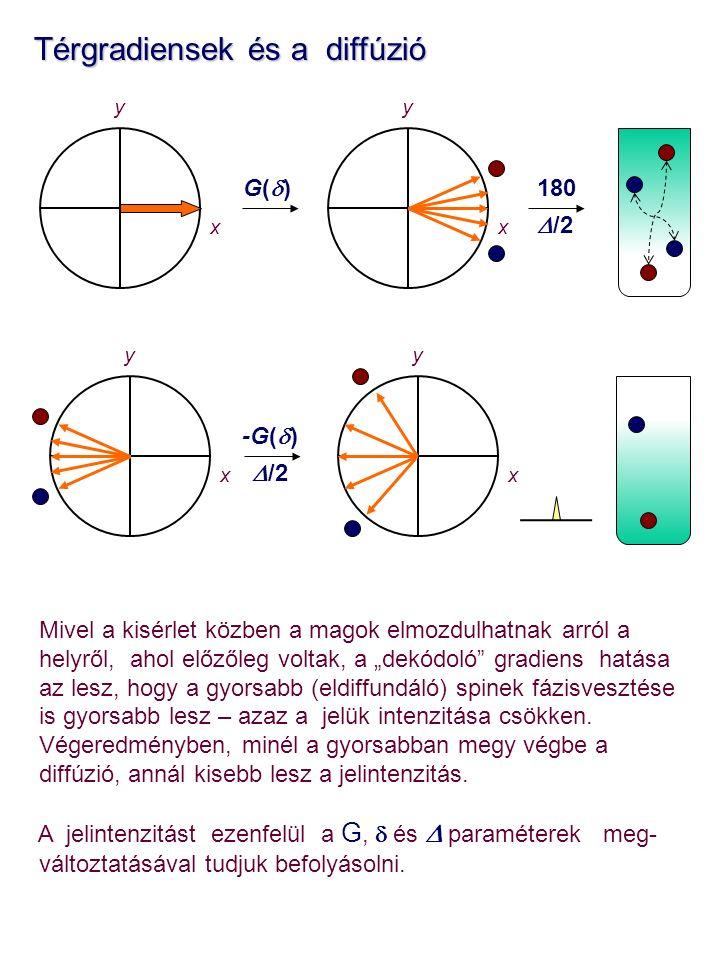 """yy Térgradiensek és a diffúzió Térgradiensek és a diffúzió Mivel a kisérlet közben a magok elmozdulhatnak arról a helyről, ahol előzőleg voltak, a """"dekódoló gradiens hatása az lesz, hogy a gyorsabb (eldiffundáló) spinek fázisvesztése is gyorsabb lesz – azaz a jelük intenzitása csökken."""