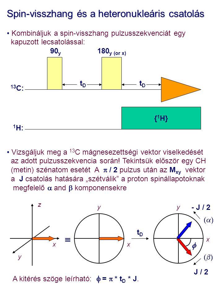 Spin-visszhang és a heteronukleáris csatolás Kombináljuk a spin-visszhang pulzusszekvenciát egy kapuzott lecsatolással: Vizsgáljuk meg a 13 C mágnesezettségi vektor viselkedését az adott pulzusszekvencia során.