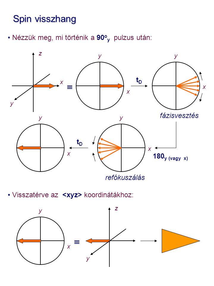 Spin visszhang Spin visszhang Nézzük meg, mi történik a 90 o y pulzus után: Visszatérve az koordinátákhoz: z x y x y  x y x y x y tDtD 180 y (vagy x) tDtD fázisvesztés refókuszálás z y  x y