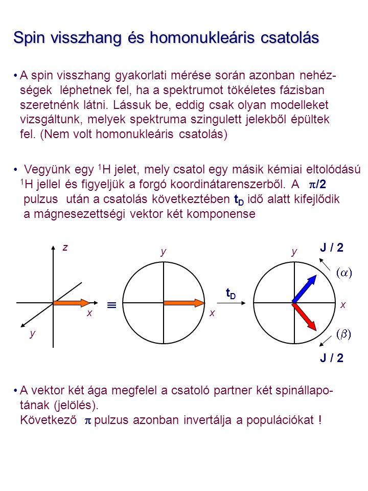 Spin visszhang és homonukleáris csatolás A spin visszhang gyakorlati mérése során azonban nehéz- ségek léphetnek fel, ha a spektrumot tökéletes fázisban szeretnénk látni.