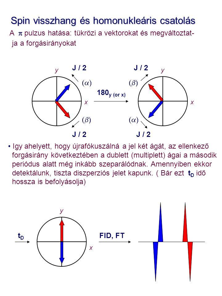 Spin visszhang és homonukleáris csatolás Spin visszhang és homonukleáris csatolás A  pulzus hatása: tükrözi a vektorokat és megváltoztat- ja a forgásirányokat Igy ahelyett, hogy újrafókuszálná a jel két ágát, az ellenkező forgásirány következtében a dublett (multiplett) ágai a második periódus alatt még inkább szeparálódnak.