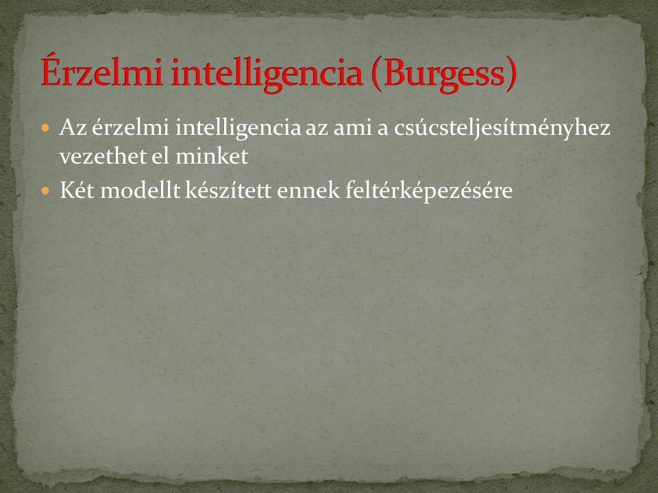 Az érzelmi intelligencia az ami a csúcsteljesítményhez vezethet el minket Két modellt készített ennek feltérképezésére