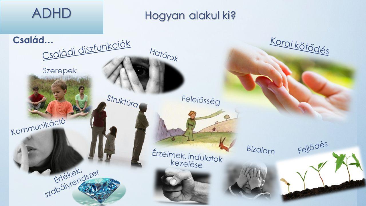 Családi diszfunkciók Korai kötődés Felelősség Szerepek Struktúra Kommunikáció Értékek, szabályrendszer Határok Bizalom Érzelmek, indulatok kezelése Fejlődés ADHD Hogyan alakul ki.