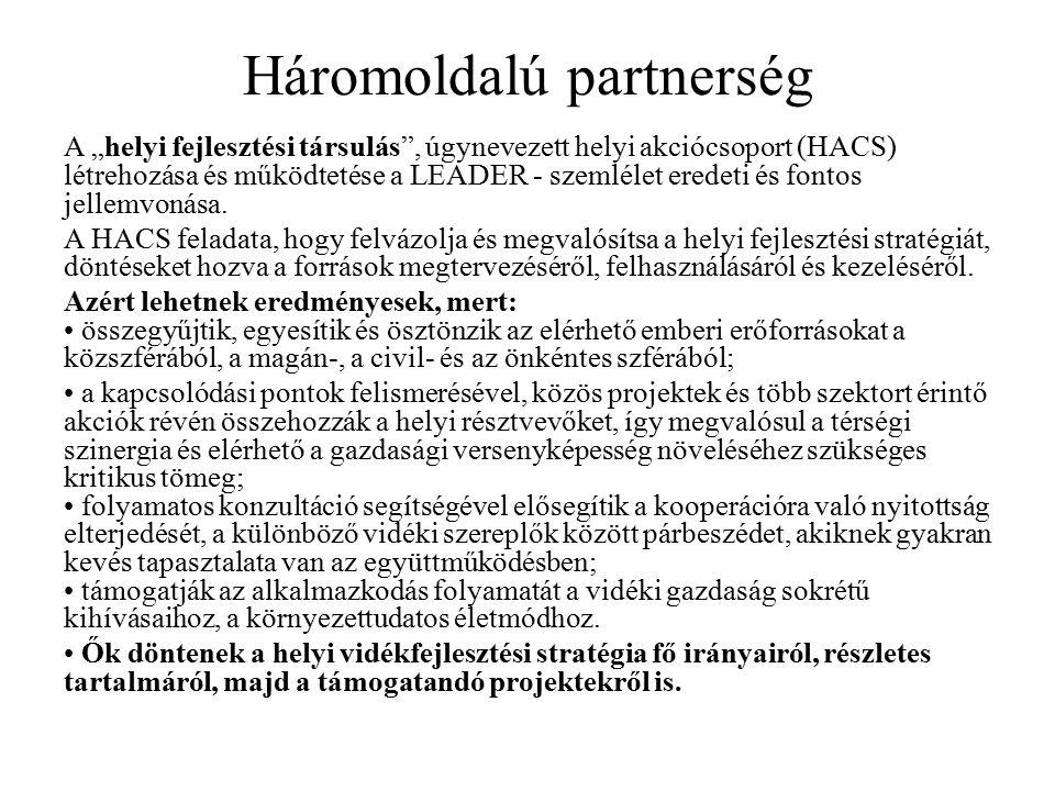 """Háromoldalú partnerség A """"helyi fejlesztési társulás , úgynevezett helyi akciócsoport (HACS) létrehozása és működtetése a LEADER - szemlélet eredeti és fontos jellemvonása."""