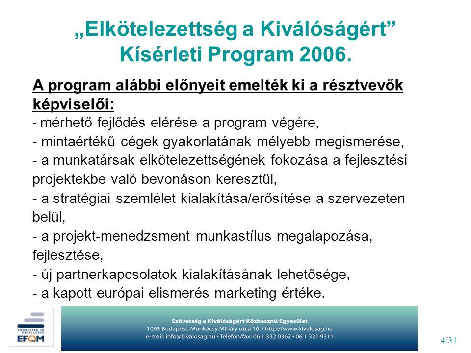4/31 A program alábbi előnyeit emelték ki a résztvevők képviselői: - mérhető fejlődés elérése a program végére, - mintaértékű cégek gyakorlatának mély