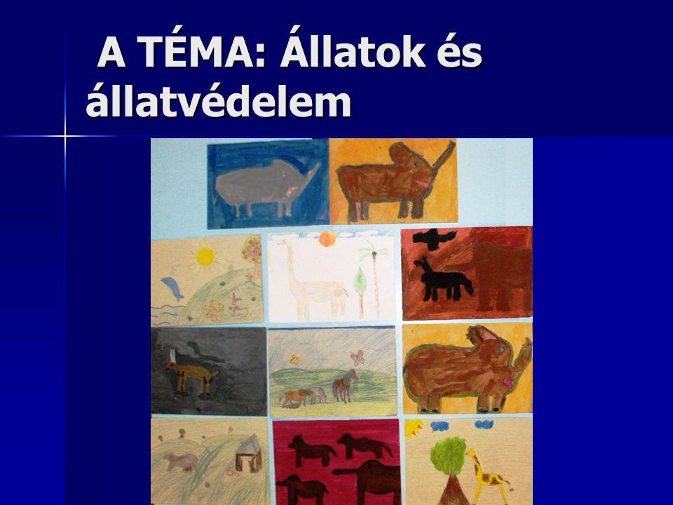 A TÉMA: Állatok és állatvédelem A TÉMA: Állatok és állatvédelem
