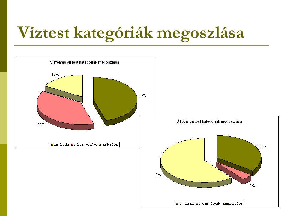 Víztest kategóriák megoszlása