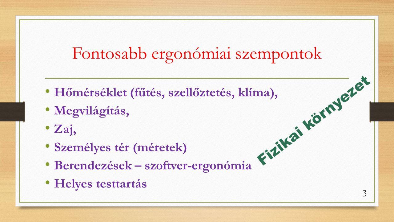 Fontosabb ergonómiai szempontok Hőmérséklet (fűtés, szellőztetés, klíma), Megvilágítás, Zaj, Személyes tér (méretek) Berendezések – szoftver-ergonómia Helyes testtartás Fizikai környezet 3