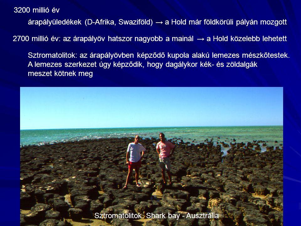Sztromatolitok. Shark bay - Ausztrália 3200 millió év árapályüledékek (D-Afrika, Swaziföld) → a Hold már földkörüli pályán mozgott Sztromatolitok: az
