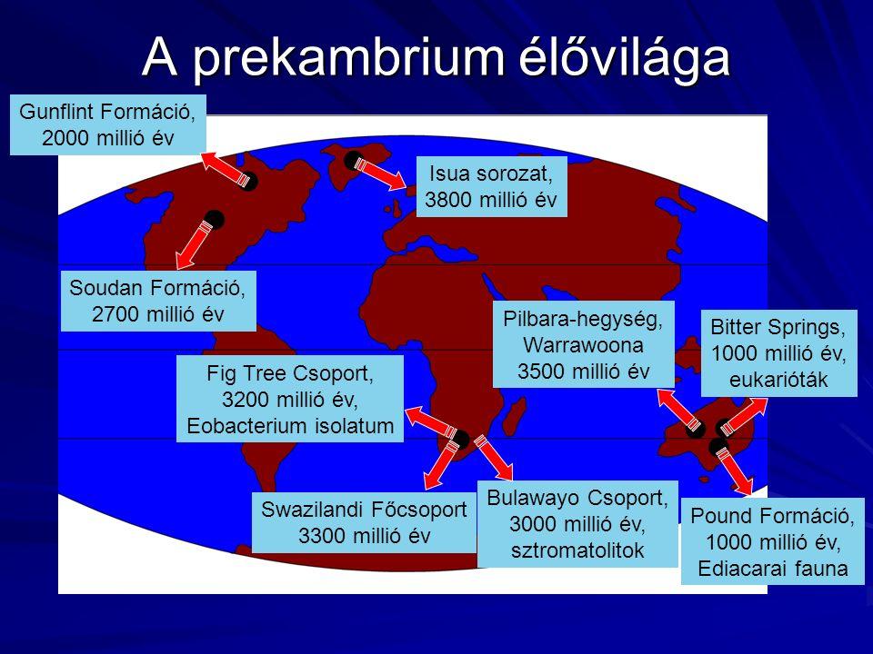 Isua sorozat, 3800 millió év Pilbara-hegység, Warrawoona 3500 millió év Swazilandi Főcsoport 3300 millió év Fig Tree Csoport, 3200 millió év, Eobacterium isolatum Soudan Formáció, 2700 millió év Bulawayo Csoport, 3000 millió év, sztromatolitok Gunflint Formáció, 2000 millió év Bitter Springs, 1000 millió év, eukarióták Pound Formáció, 1000 millió év, Ediacarai fauna A prekambrium élővilága