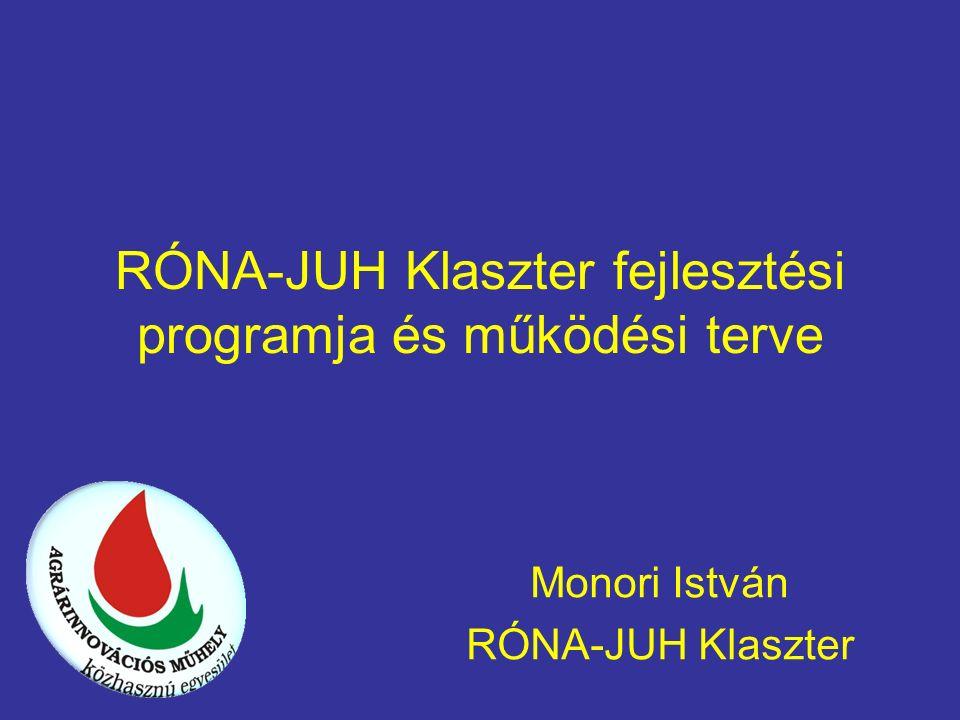 RÓNA-JUH Klaszter fejlesztési programja és működési terve Monori István RÓNA-JUH Klaszter