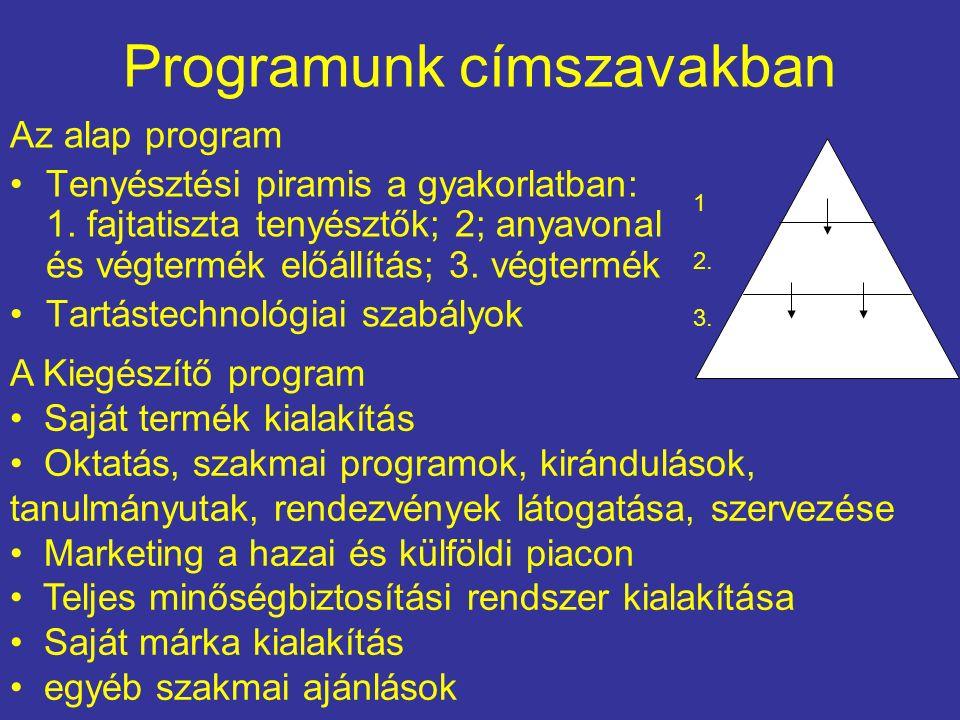 Programunk címszavakban Az alap program Tenyésztési piramis a gyakorlatban: 1.