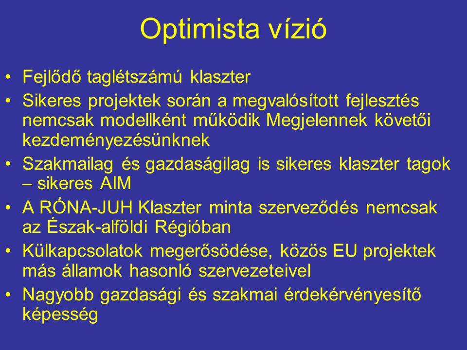 Optimista vízió Fejlődő taglétszámú klaszter Sikeres projektek során a megvalósított fejlesztés nemcsak modellként működik Megjelennek követői kezdeményezésünknek Szakmailag és gazdaságilag is sikeres klaszter tagok – sikeres AIM A RÓNA-JUH Klaszter minta szerveződés nemcsak az Észak-alföldi Régióban Külkapcsolatok megerősödése, közös EU projektek más államok hasonló szervezeteivel Nagyobb gazdasági és szakmai érdekérvényesítő képesség
