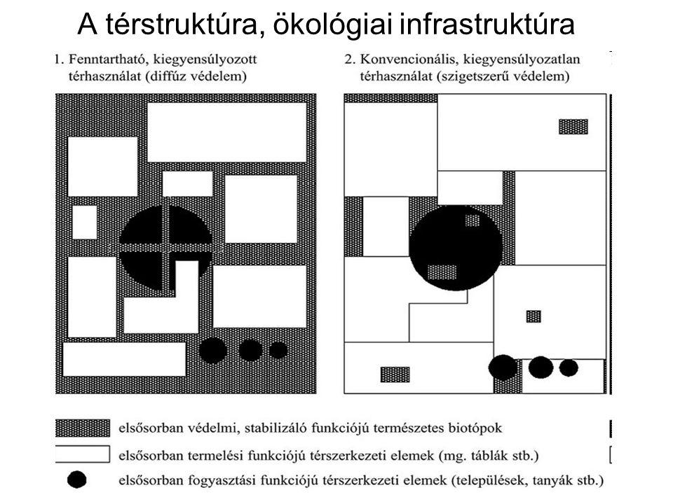 A térstruktúra, ökológiai infrastruktúra