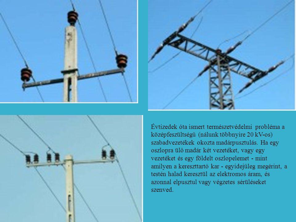 Évtizedek óta ismert természetvédelmi probléma a középfeszültségű (nálunk többnyire 20 kV-os) szabadvezetékek okozta madárpusztulás.