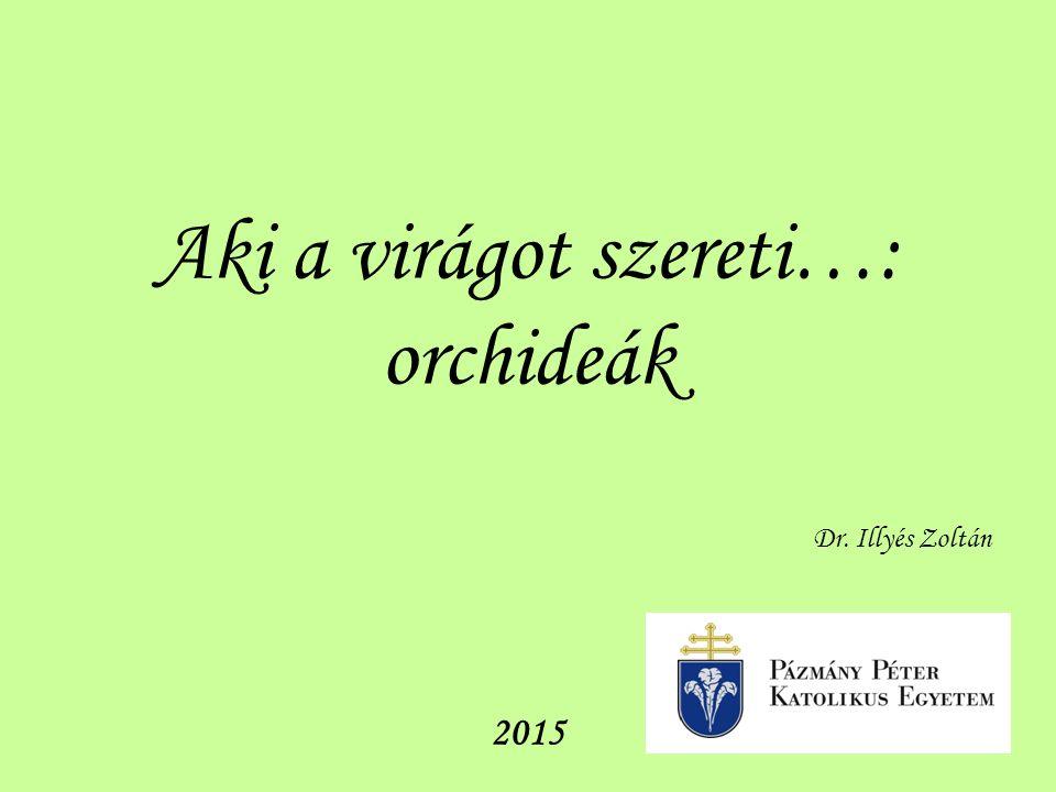 Aki a virágot szereti…: orchideák Dr. Illyés Zoltán 2015