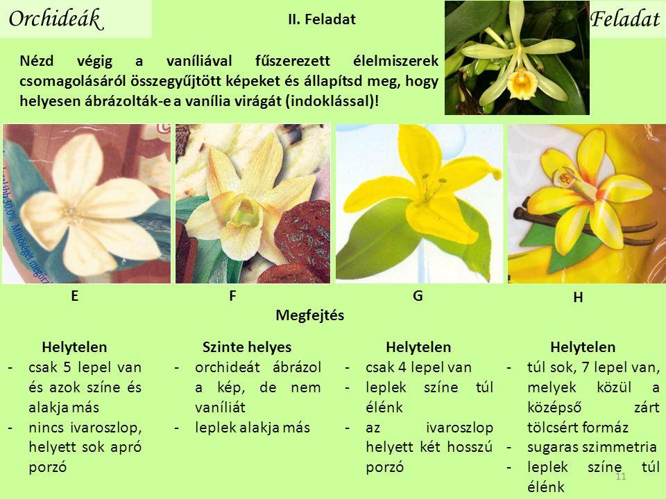 Orchideák Feladat Nézd végig a vaníliával fűszerezett élelmiszerek csomagolásáról összegyűjtött képeket és állapítsd meg, hogy helyesen ábrázolták-e a vanília virágát (indoklással).