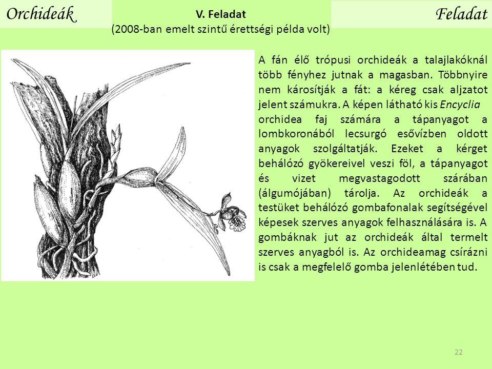 Orchideák Feladat V. Feladat (2008-ban emelt szintű érettségi példa volt) A fán élő trópusi orchideák a talajlakóknál több fényhez jutnak a magasban.