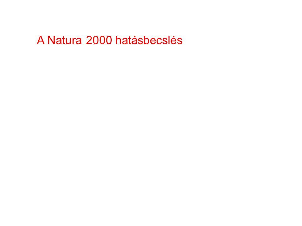 A Natura 2000 hatásbecslés