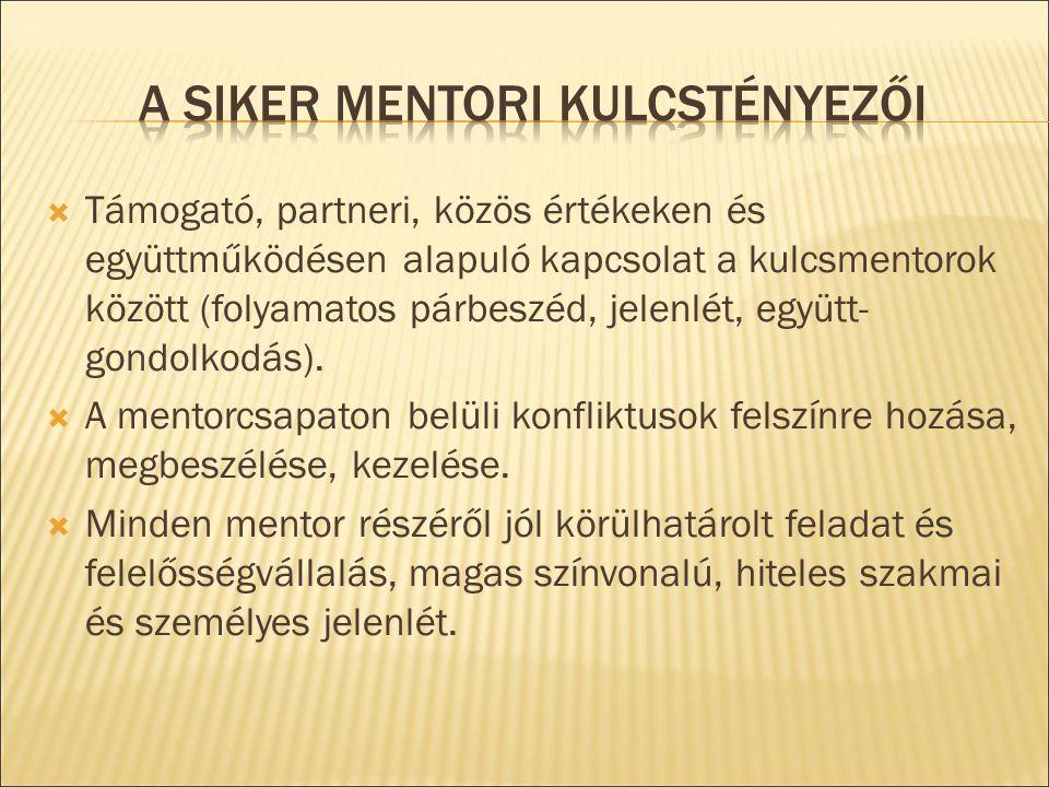  Támogató, partneri, közös értékeken és együttműködésen alapuló kapcsolat a kulcsmentorok között (folyamatos párbeszéd, jelenlét, együtt- gondolkodás).
