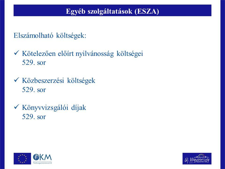 Egyéb szolgáltatások (ESZA) Elszámolható költségek: Kötelezően előírt nyilvánosság költségei 529.