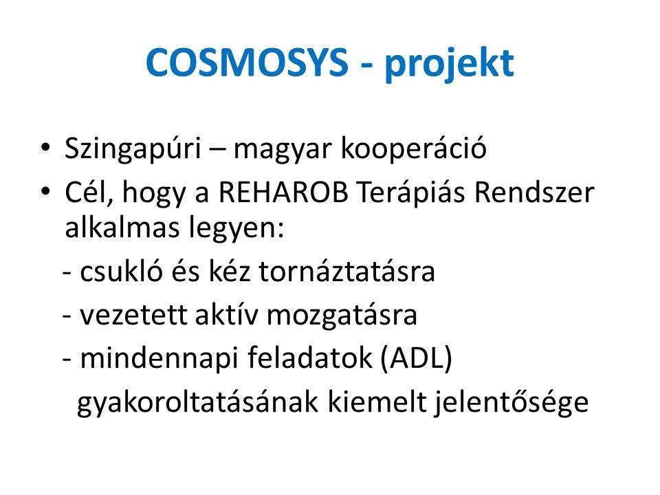 COSMOSYS - projekt Szingapúri – magyar kooperáció Cél, hogy a REHAROB Terápiás Rendszer alkalmas legyen: - csukló és kéz tornáztatásra - vezetett aktív mozgatásra - mindennapi feladatok (ADL) gyakoroltatásának kiemelt jelentősége