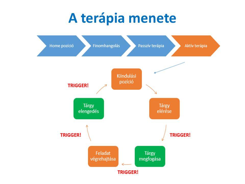 A terápia menete