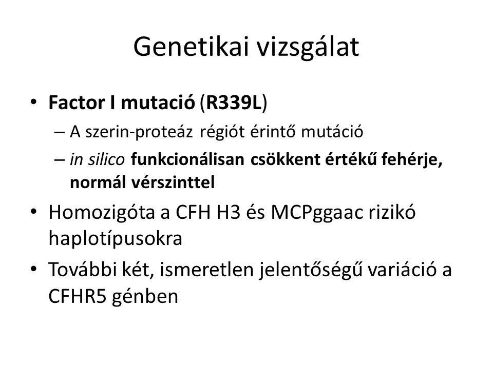 Genetikai vizsgálat Factor I mutació (R339L) – A szerin-proteáz régiót érintő mutáció – in silico funkcionálisan csökkent értékű fehérje, normál vérszinttel Homozigóta a CFH H3 és MCPggaac rizikó haplotípusokra További két, ismeretlen jelentőségű variáció a CFHR5 génben