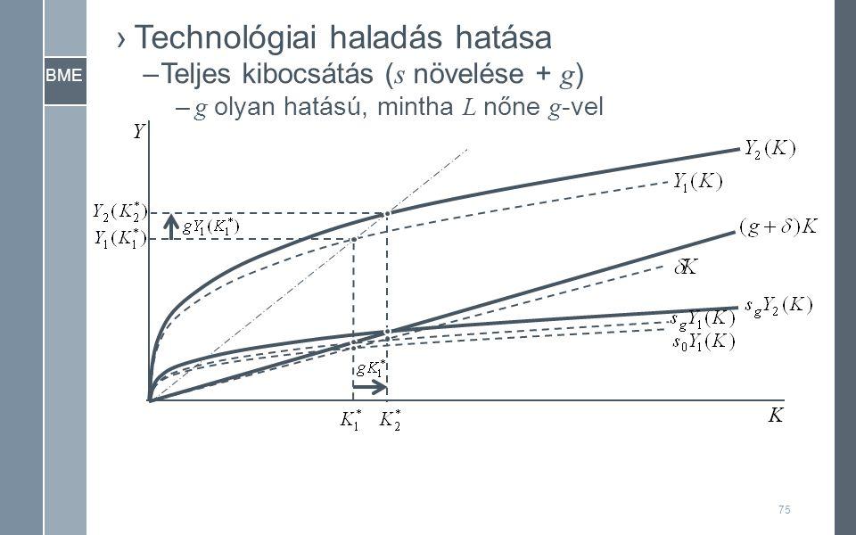 BME Y K ›Technológiai haladás hatása –Teljes kibocsátás ( s növelése + g ) – g olyan hatású, mintha L nőne g -vel 75