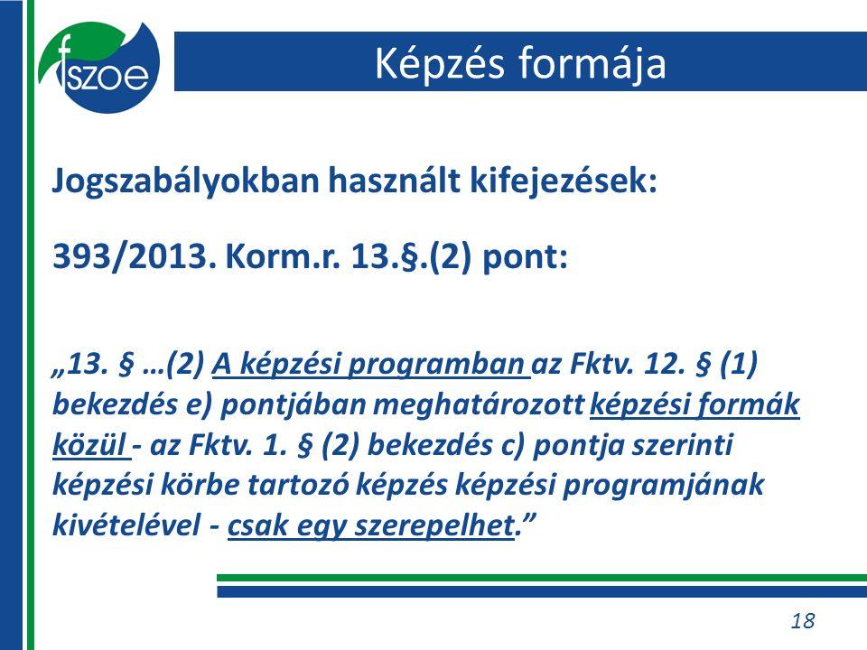 Jogszabályokban használt kifejezések: 393/2013. Korm.r.