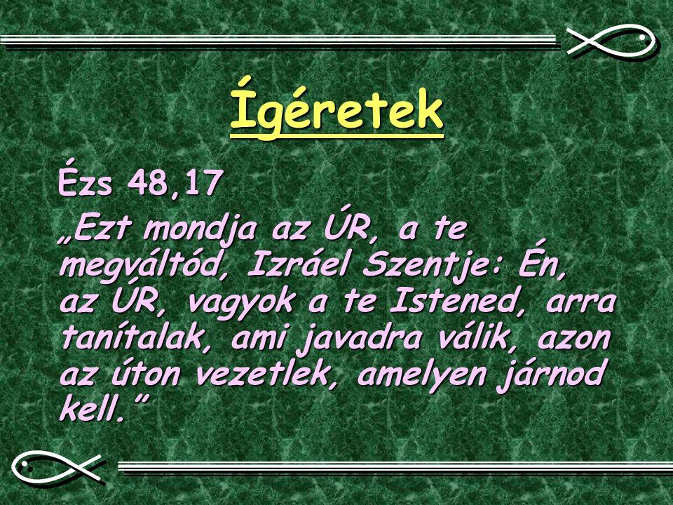 """Ígéretek Ézs 48,17 """"Ezt mondja az ÚR, a te megváltód, Izráel Szentje: Én, az ÚR, vagyok a te Istened, arra tanítalak, ami javadra válik, azon az úton"""