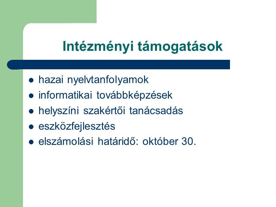 Intézményi támogatások hazai nyelvtanfolyamok informatikai továbbképzések helyszíni szakértői tanácsadás eszközfejlesztés elszámolási határidő: október 30.