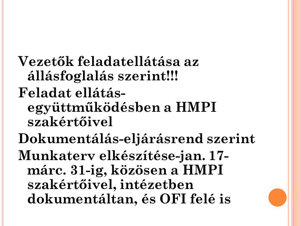 Vezetők feladatellátása az állásfoglalás szerint!!! Feladat ellátás- együttműködésben a HMPI szakértőivel Dokumentálás-eljárásrend szerint Munkaterv e