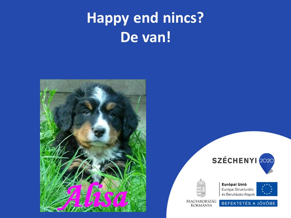 Happy end nincs? De van!