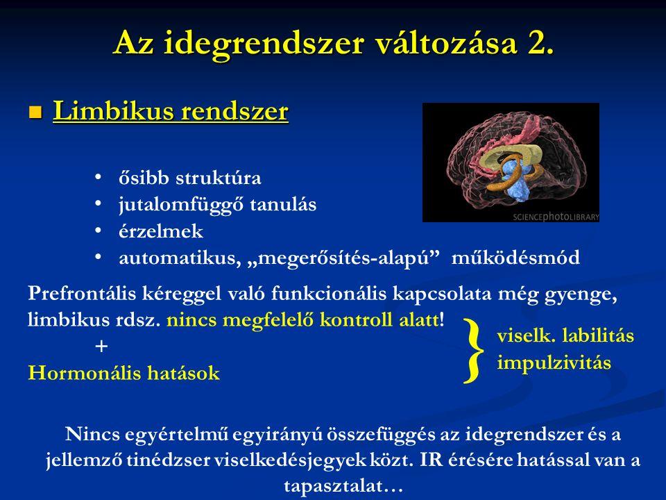 """Az idegrendszer változása 2. Limbikus rendszer Limbikus rendszer ősibb struktúra jutalomfüggő tanulás érzelmek automatikus, """"megerősítés-alapú"""" működé"""